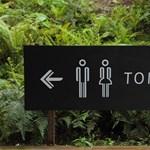 Lázadnak az amerikai államok Obama transznemű mosdói ellen