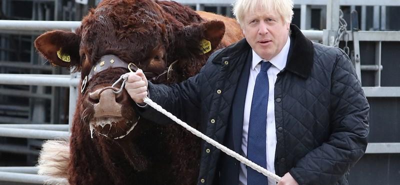 Boris Johnson marhákkal találkozott