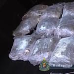 Holland-finn kábítószer megarazzia