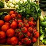 Talaj, napfény és növényvédőszerek nélkül termesztettek, 270 kg zöldséget sikerült betakarítaniuk