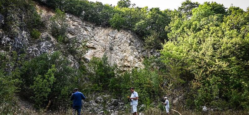 Megszólalt az agrárminiszter a Pilisben újranyitni tervezett bányáról