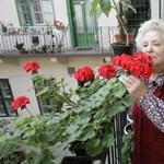 A nyugdíjasok többet beszélnek telefonon, mint a fiatalok – itt a bizonyíték