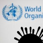 WHO: Nemzetközi kutatócsoport indul Kínába, hogy kinyomozza a koronavírus eredetét