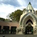 Karácsonyi szenzáció a budapesti állatkertben: gorillabébi született