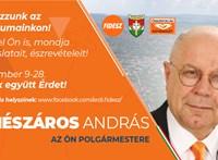 Alaptörvény-ellenes volt, hogy leszedették az érdi Fidesz plakátjait