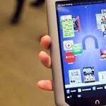 Hamarabb érkezik a Kindle versenytárs