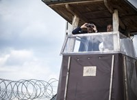 Gergely Márton: Orbán és a jogállamszabású gorilla
