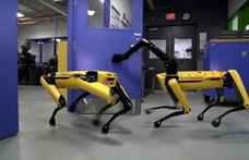 """Mostantól bárki képes lehet """"betanítani"""" a Boston Dynamics robotkutyáját"""