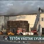 Egy óriási raktárépületet emésztettek fel a lángok Makón