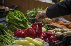 Nyers, fagyasztott vagy konzerv: eloszlatjuk a tévhiteket arról, melyik táplálóbb