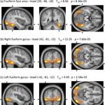 Teszt: Férfi vagy női agy van az ön fejében?