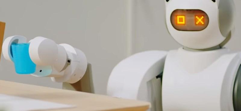 Igazi férfiálom: kitakarít, és akár sört is hoz ez a robot