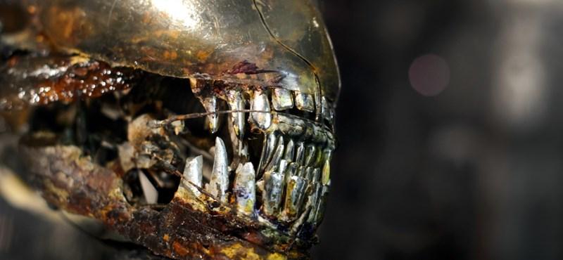 Jön egy újabb Alien-film