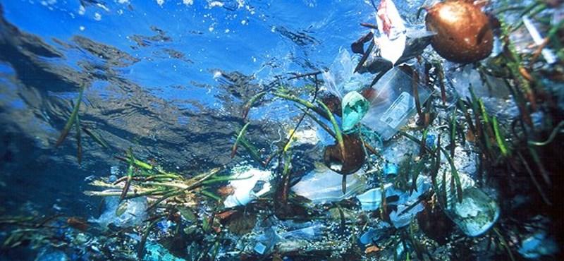 Az ausztrálok meglépték a lehetetlent: 80 százalékkal kevesebb műanyag zacskót használnak