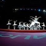 Fotó: hattyúk tava az olimpiai női torna megnyitóján