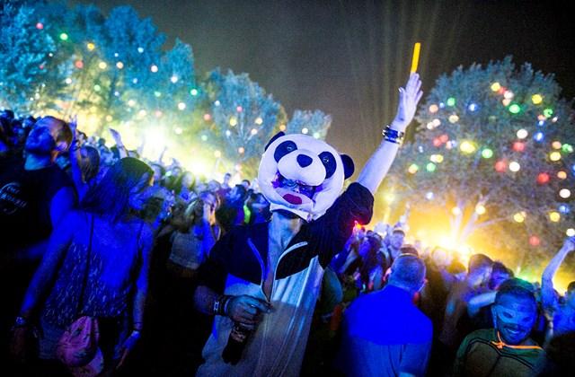 tg.16.08.14. - Sziget Fesztivál 2016 - Hello Wood