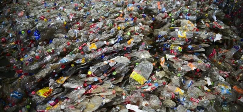 Dobja a műanyag palackokat a világ legnagyobb zenei fesztiválja