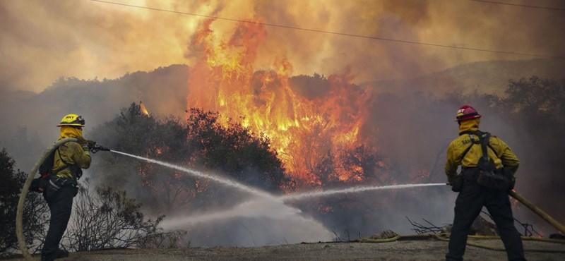 Kétszer akkora területet emésztett fel a tűz Kaliforniában, mint az eddigi legrosszabb évben