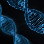 Újabb génszerkesztett babák születhetnek