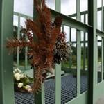 Dunai hajóbaleset: Érdnél is előkerült egy holttest