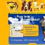 Budapest környéki kutyások figyelem: jön a sétáltató nap!