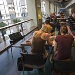 Jobbik: nem az ész, hanem a pénz dönt majd a diplomáról?