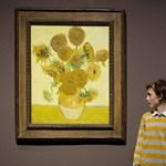 Hervadnak Van Gogh napraforgói, mert barnul a sárga festék