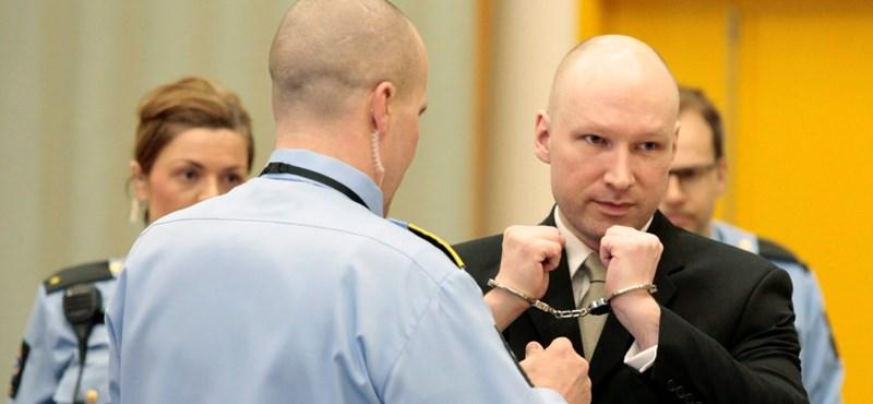 Ma már szót fogadott a bírónak a norvég tömeggyilkos - fotó