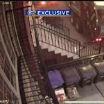 Már majdnem megúszták az éjszakát az autók, aztán jött a kukásautó – videó