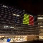 Az Európai Bizottság vizsgálni fogja az MTA megcsonkítását