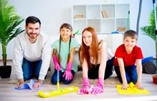 Appajánló: Utál takarítani? Ez az alkalmazás segít megszeretni!