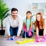 Azért, mert az anyós ott dolgozik, még nem családi egy vállalkozás