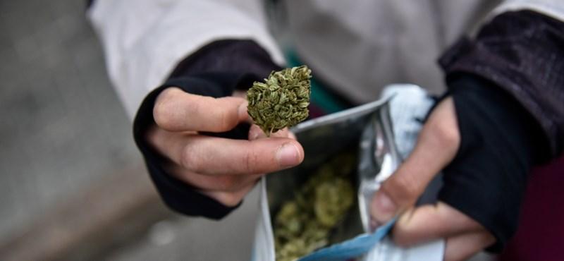 A Wall Street-i befektetők is fejest ugrottak a marihuánaüzletbe