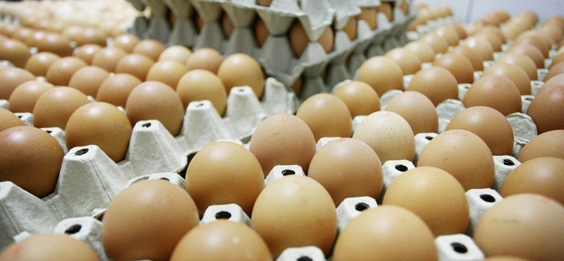 Húsvétra sem szökik az égig a tojás ára