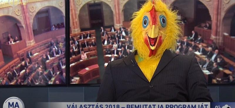 Magyar Kétfarkú Kutya Párt a köztévében: Kotkodács, kot-kodács