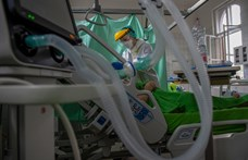 Több mint 50 ezer áldozata van már a járványnak Olaszországban