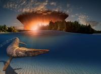 Végre lezárhatjuk az ősi vitát arról, mi okozta a dinoszauruszok kihalását