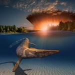 Meglepően gyorsan tért vissza az élet a dinoszauruszokat kipusztító aszteroida kráterébe