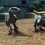 Kijött az új Jurassic World előzetese – videó