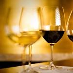 Kárpát-medence – a bor, ami közös