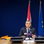 Orbán, a feketeseg... vagyis feketelábú - mire gondolhatott?