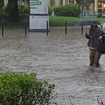 Briliáns poént sütött el a pesti özönvízről a Kétfarkú