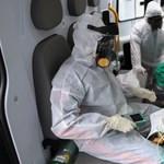 Már majdnem 8 ezren haltak meg a járványban Brazíliában