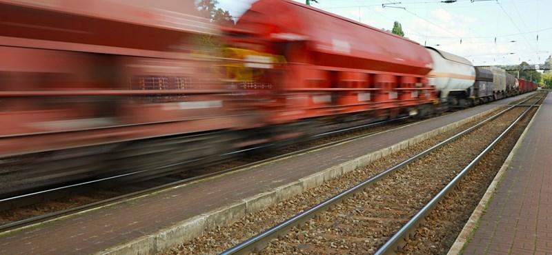 Szarvast gázolt a vonat, beállt a Budapest–Pécs-vasútvonal