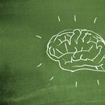 Elég gyorsan forog az agyad? Ebből a játékból kiderül