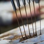 Hozzáadott cukor nélküli csokit dob piacra a Nestlé