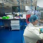 Világpolitikai ügy lett abból, hogy nem tudni, honnan ugrott ránk a koronavírus