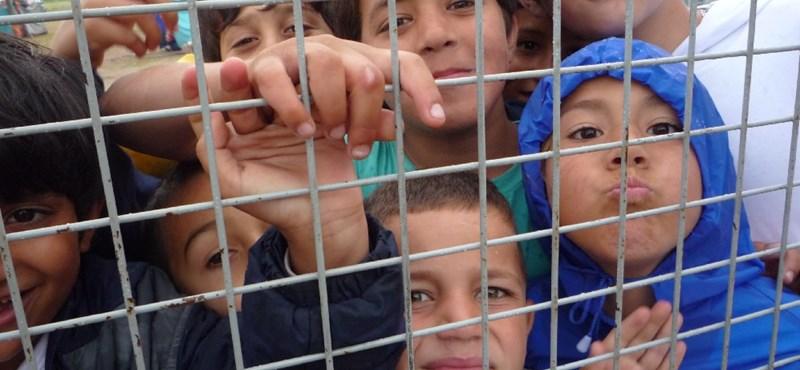 Az államtitkár szerint nem verik a menekülteket a határnál