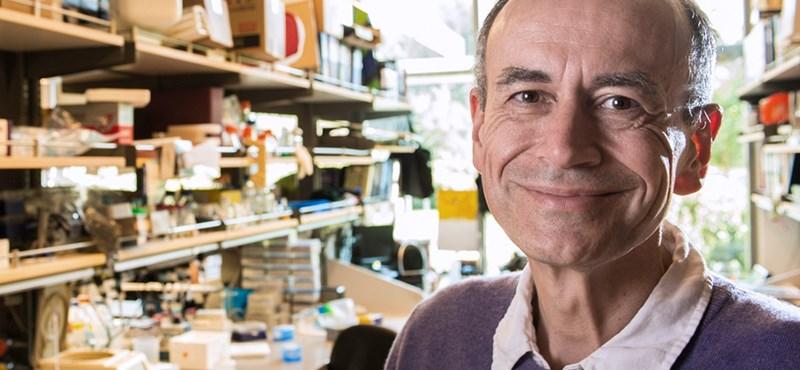 """""""Nekünk tudósoknak jóval szerényebbnek kellene lennünk"""" – interjú a Nobel-díjas Thomas Südhoffal"""
