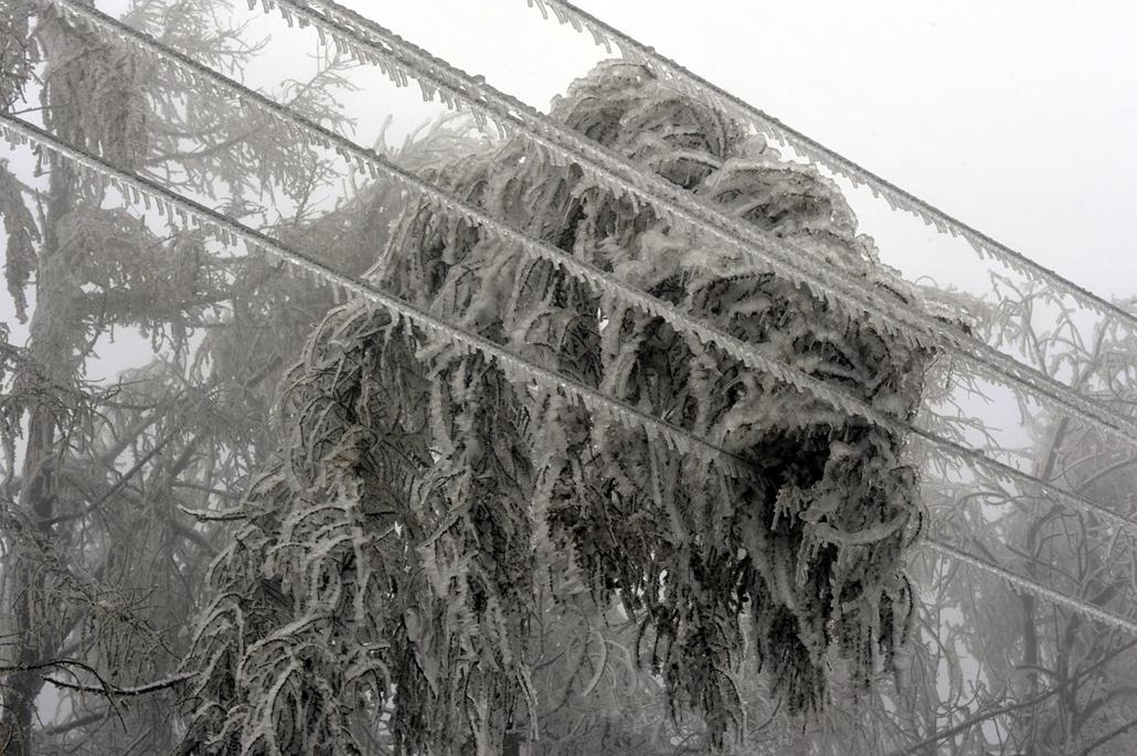 mti. ónos eső, jegesedés, tél 2014, 2014.12.02. Az ónos esőtől eljegesedett fák és villanyvezetékek Dobogókőn 2014. december 2-án. A katasztrófavédelem és a rendőrség lezárta az utat az ónos esőtől kialakult eljegesedés miatt, a településre csak a kataszt